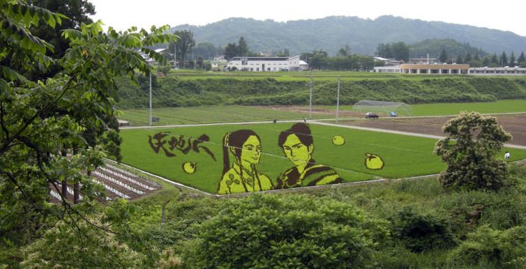 Tambo-art-in-Yonezawa-Yamagata